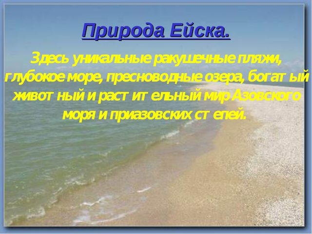 Природа Ейска. Здесь уникальные ракушечные пляжи, глубокое море, пресноводные...