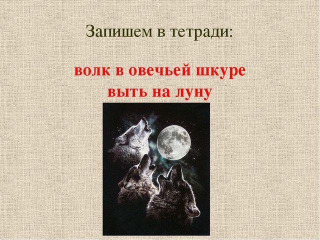 Запишем в тетради: волк в овечьей шкуре выть на луну