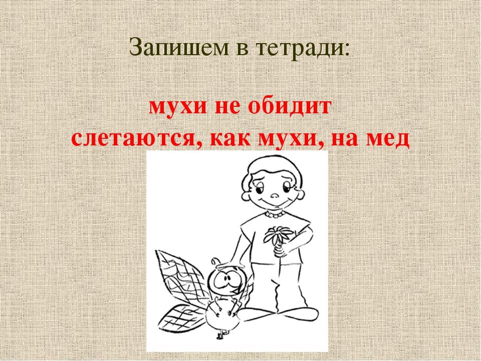Запишем в тетради: мухи не обидит слетаются, как мухи, на мед