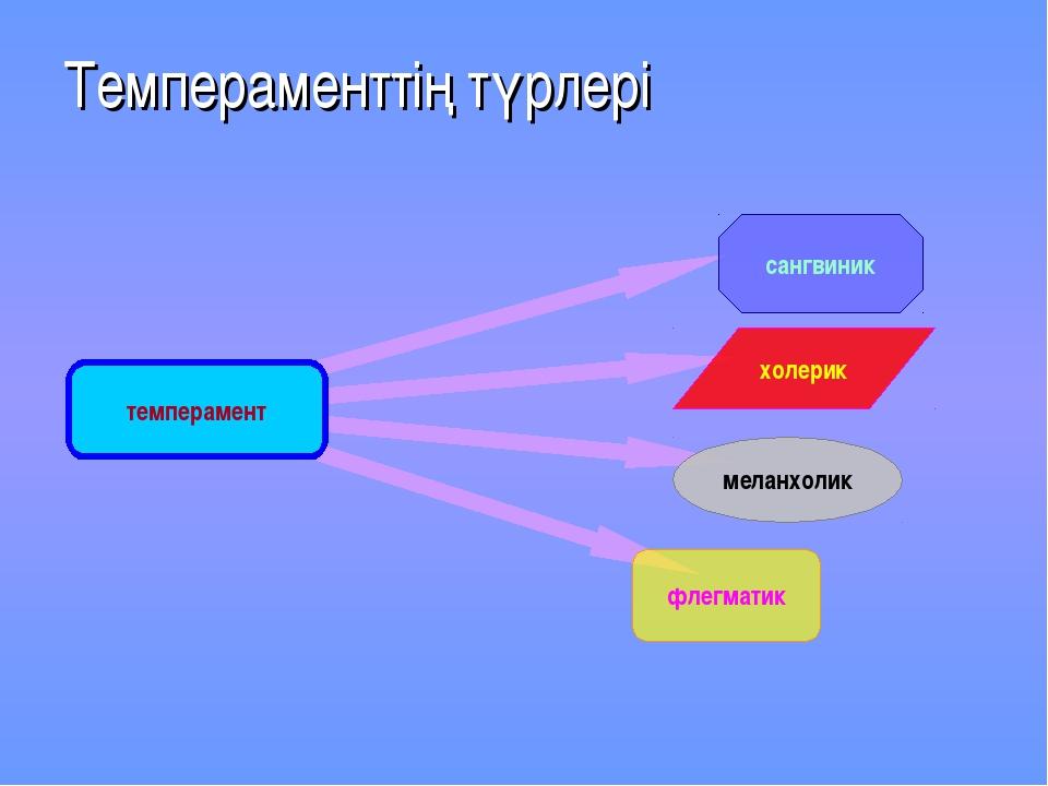 Темпераменттің түрлері темперамент сангвиник меланхолик холерик флегматик