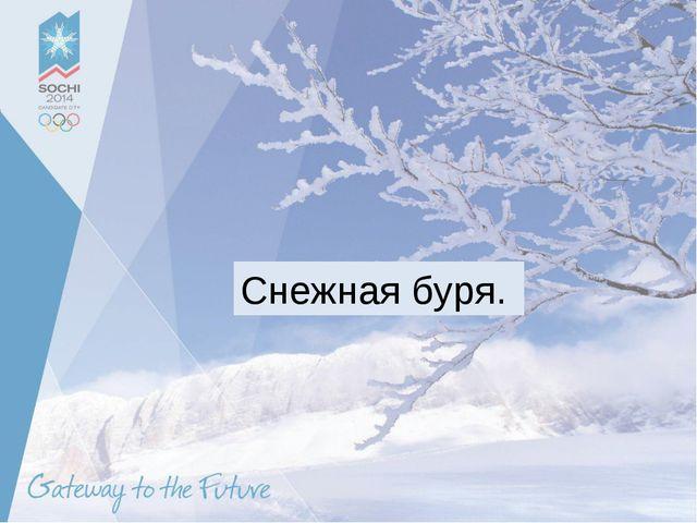 Снежная буря.