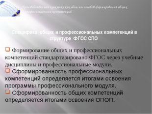 Специфика общих и профессиональных компетенций в структуре ФГОС СПО Производс