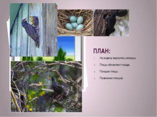 ПЛАН: На родину вернулись скворцы. Птицы обновляют гнезда. Поющие птицы. Появ
