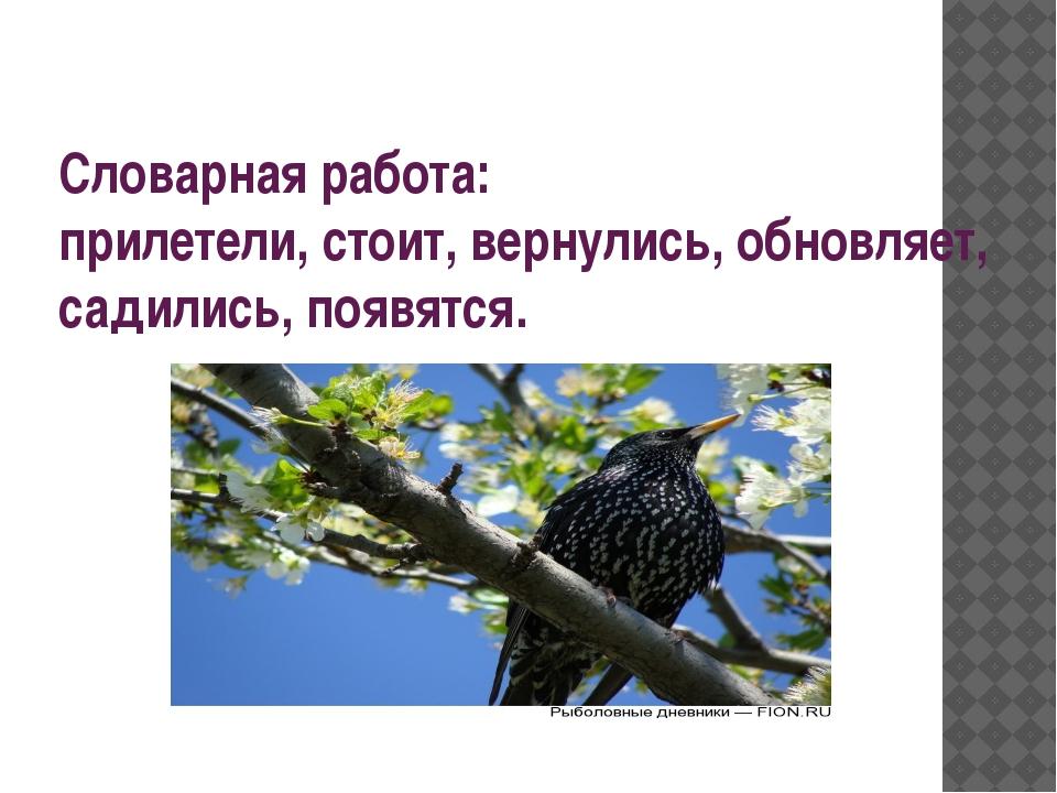 Словарная работа: прилетели, стоит, вернулись, обновляет, садились, появятся.