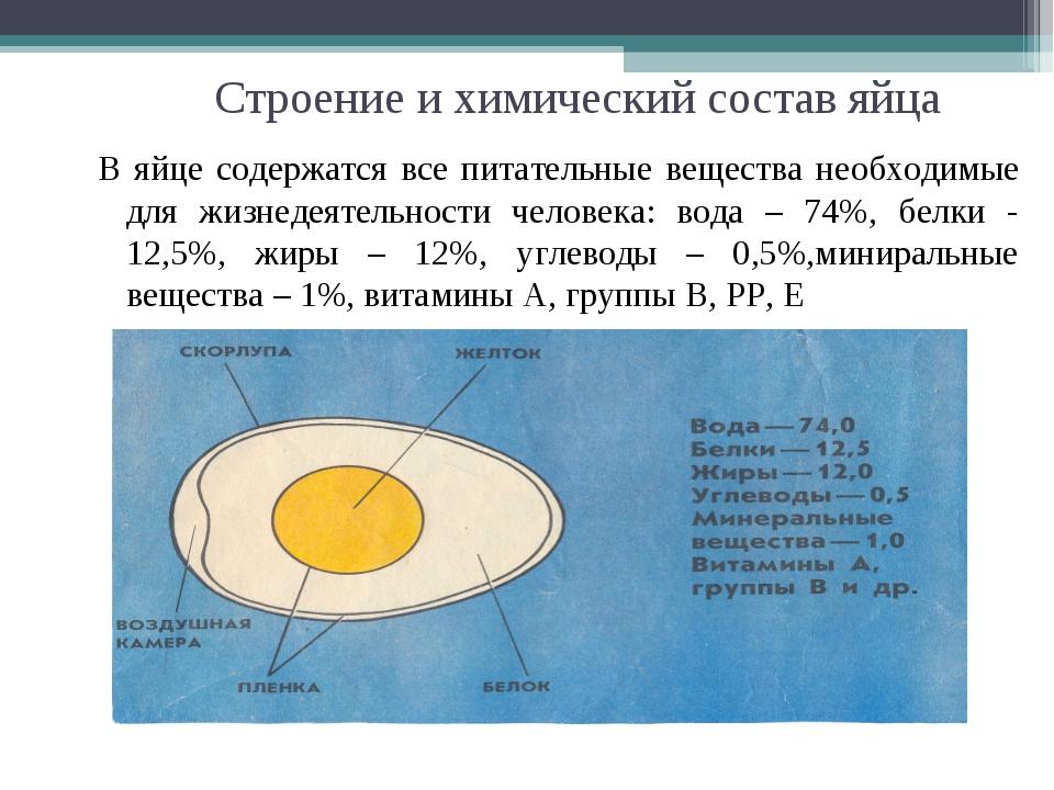 Строение и химический состав яйца В яйце содержатся все питательные вещества...