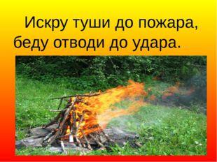 Искру туши до пожара, беду отводи до удара.