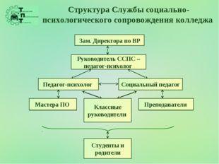 Структура Службы социально-психологического сопровождения колледжа Зам. Дирек
