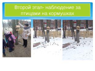 Второй этап- наблюдение за птицами на кормушках