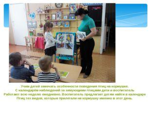 Учим детей замечать особенности поведения птиц на кормушке. С календарём набл