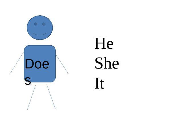 Does He She It