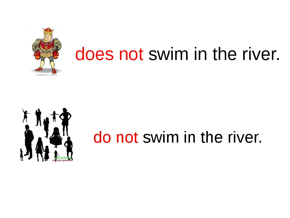 does not swim in the river. do not swim in the river.