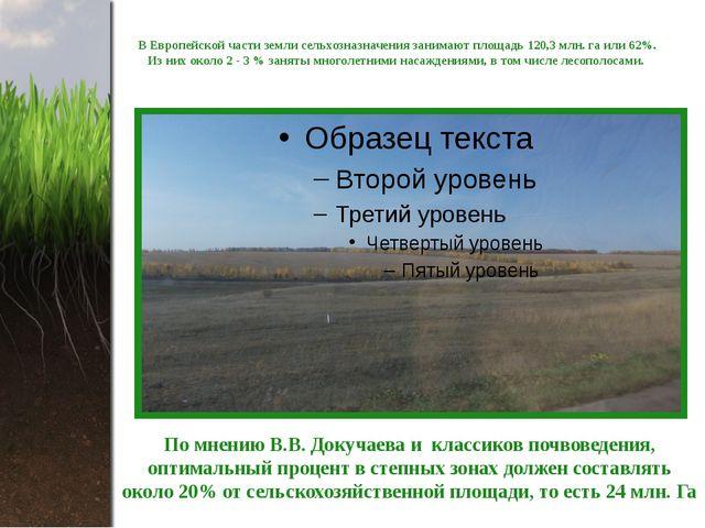 В Европейской части земли сельхозназначения занимают площадь 120,3 млн. га ил...