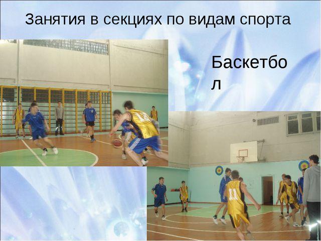 Занятия в секциях по видам спорта Баскетбол