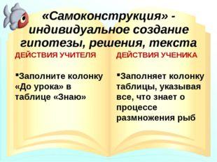 «Самоконструкция» - индивидуальное создание гипотезы, решения, текста ДЕЙСТВИ