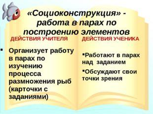 «Социоконструкция» - работа в парах по построению элементов ДЕЙСТВИЯ УЧИТЕЛЯ