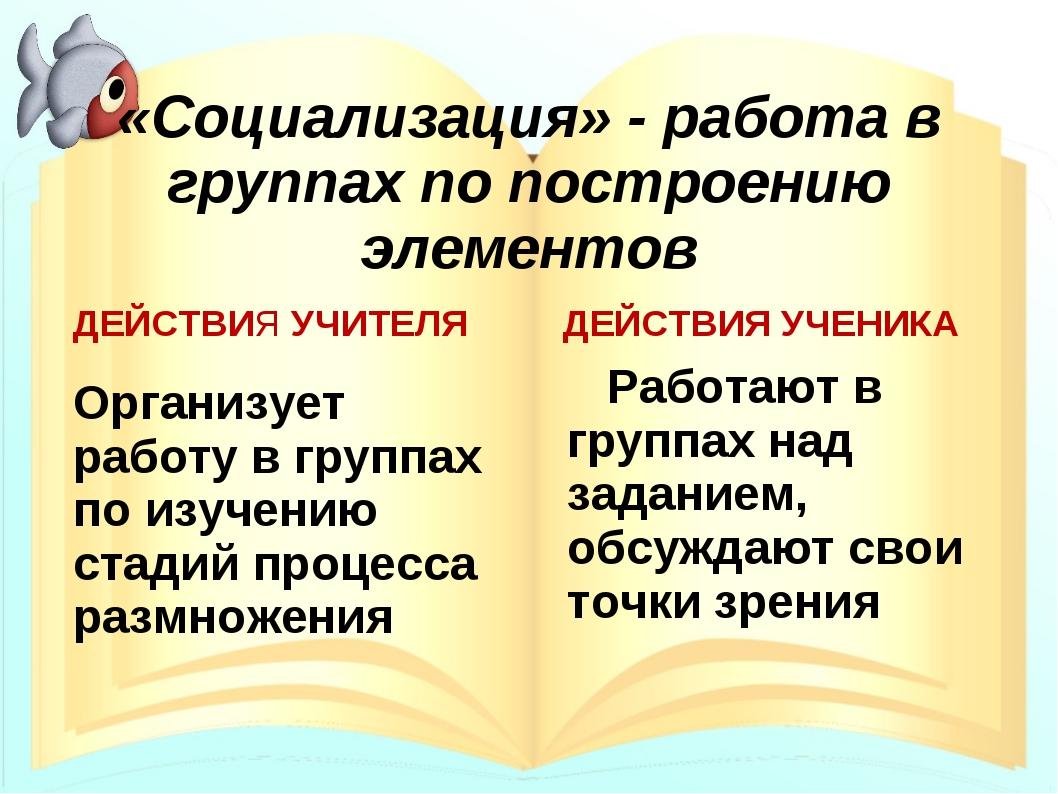 «Социализация» - работа в группах по построению элементов ДЕЙСТВИЯ УЧИТЕЛЯ Ор...