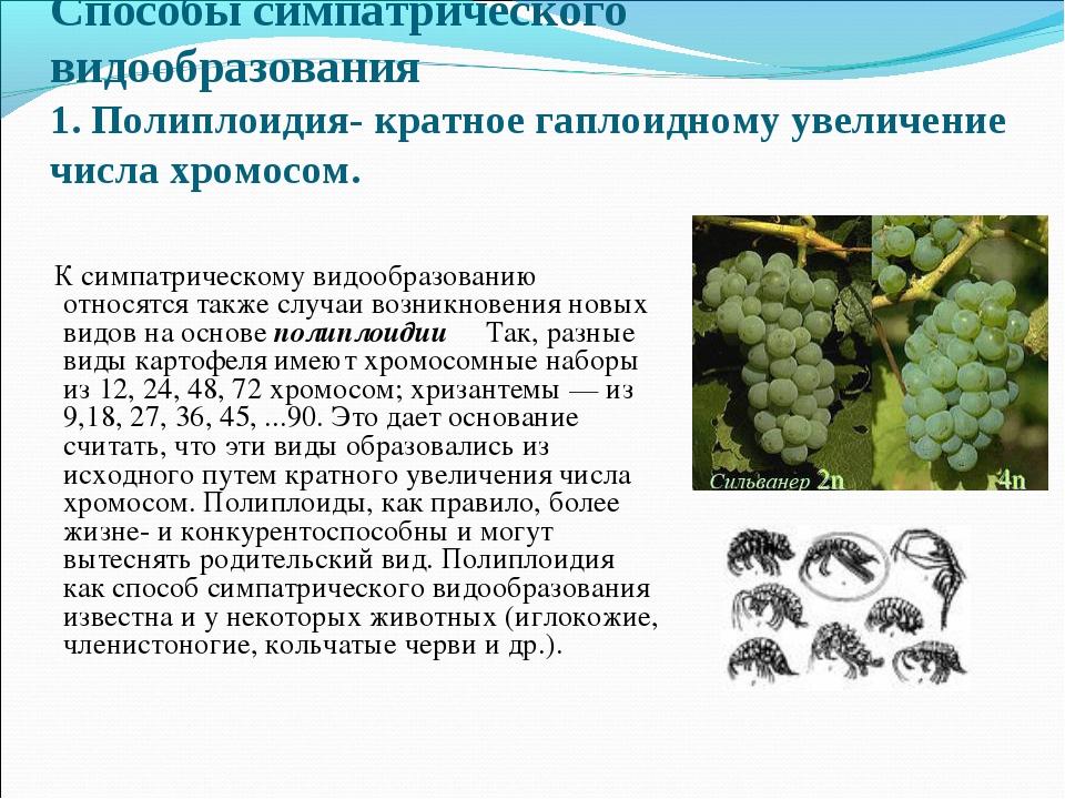 Способы симпатрического видообразования 1. Полиплоидия- кратное гаплоидному у...