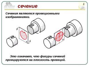 сечение Сечения являются проекционными изображениями. Это означает, что фигу