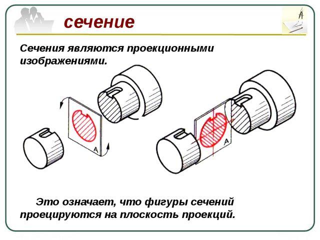 сечение Сечения являются проекционными изображениями. Это означает, что фигу...