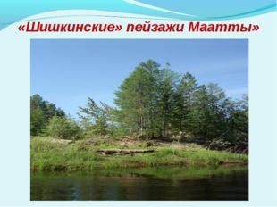 «Шишкинские» пейзажи Маатты»