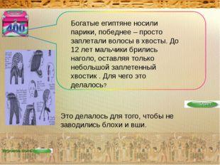 Игровое поле Богатые египтяне носили парики, победнее – просто заплетали воло