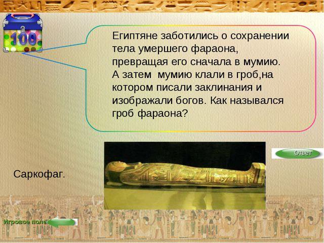 Игровое поле Египтяне заботились о сохранении тела умершего фараона, превраща...