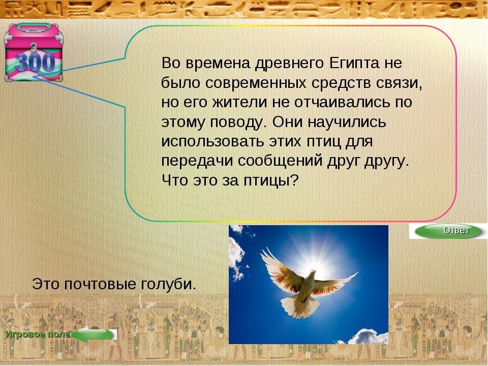 Игровое поле Во времена древнего Египта не было современных средств связи, но...