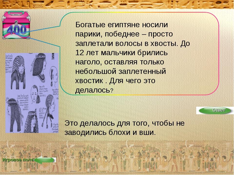 Игровое поле Богатые египтяне носили парики, победнее – просто заплетали воло...