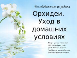 Орхидеи. Уход в домашних условиях Автор: ученица 5 «б» класса МОУ «Медновская