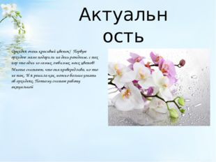 Актуальность Орхидея очень красивый цветок! Первую орхидею маме подарили на