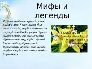 Мифы и легенды История появления орхидей полна мифов и легенд. Как гласит одн