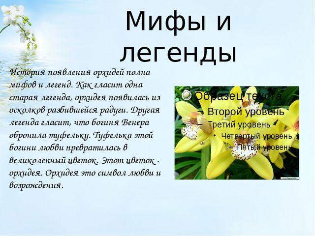 Мифы и легенды История появления орхидей полна мифов и легенд. Как гласит одн...
