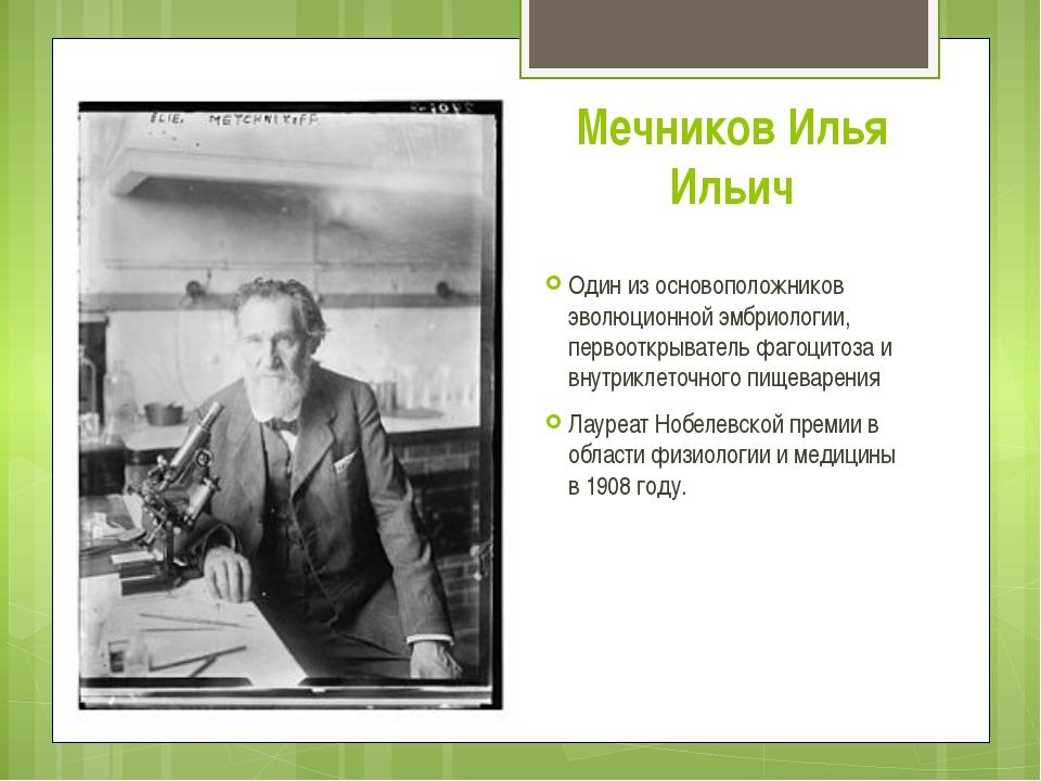 Мечников Илья Ильич Один из основоположников эволюционной эмбриологии, первоо...