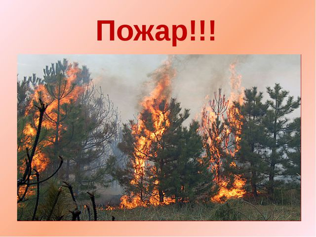 Пожар!!!