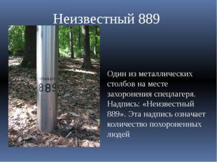 Один из металлических столбов на месте захоронения спецлагеря. Надпись: «Неиз