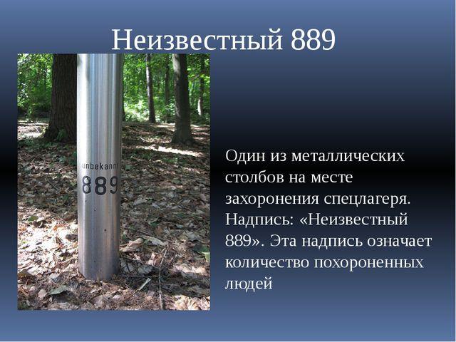Один из металлических столбов на месте захоронения спецлагеря. Надпись: «Неиз...
