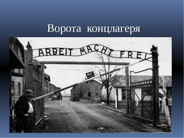 Ворота концлагеря