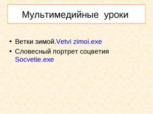 Мультимедийные уроки Ветки зимой.Vetvi zimoi.exe Словесный портрет соцветияSo