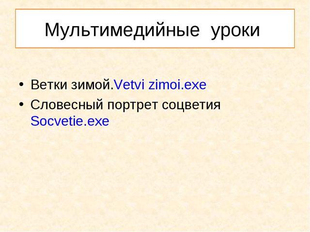 Мультимедийные уроки Ветки зимой.Vetvi zimoi.exe Словесный портрет соцветияSo...