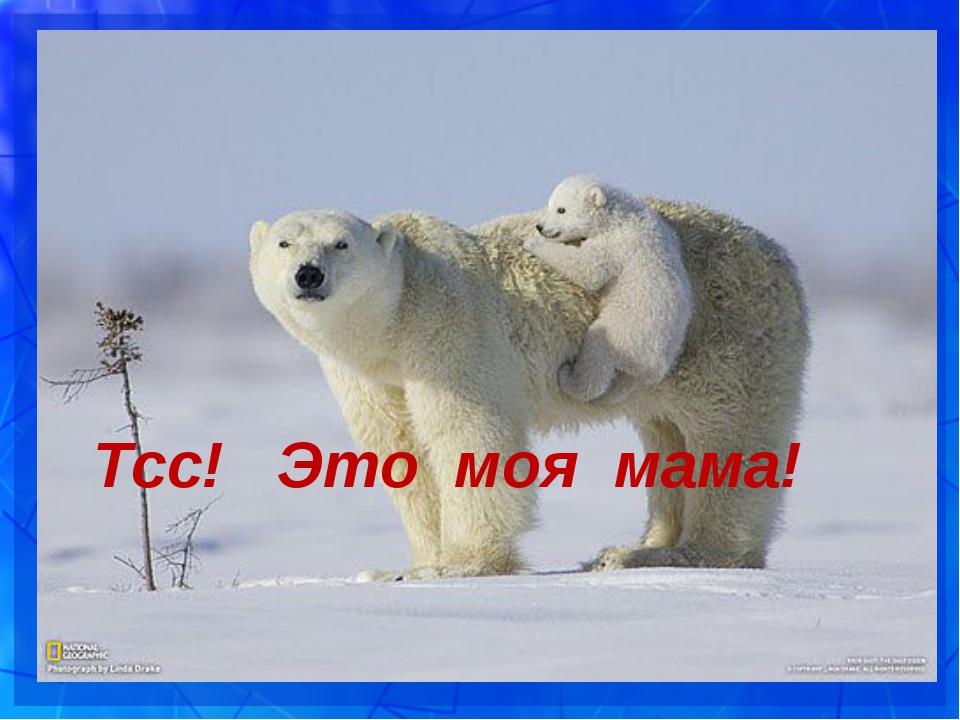 Тсс! Это моя мама!