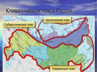 Климатические пояса России