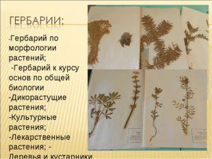 -Гербарий по морфологии растений; -Гербарий к курсу основ по общей биологии -