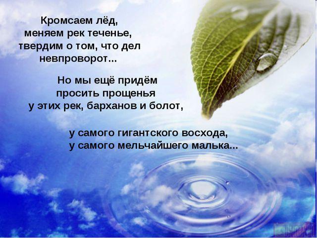 Но мы ещё придём просить прощенья у этих рек, барханов и болот, у самого гига...