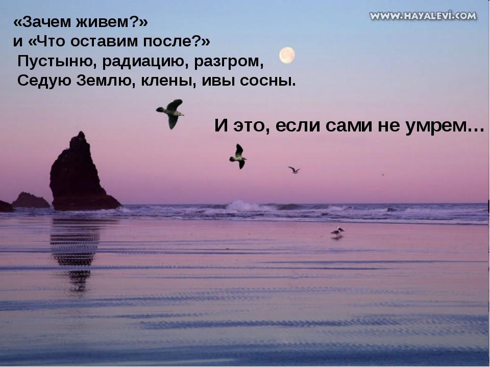 «Зачем живем?» и «Что оставим после?» Пустыню, радиацию, разгром, Седую Землю...