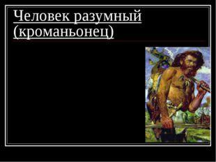 Человек разумный (кроманьонец) 1. современный облик; 2. сложные орудия труда;