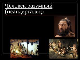 Человек разумный (неандерталец) 1. жили в пещерах; 2. шили одежду; 3. добывал