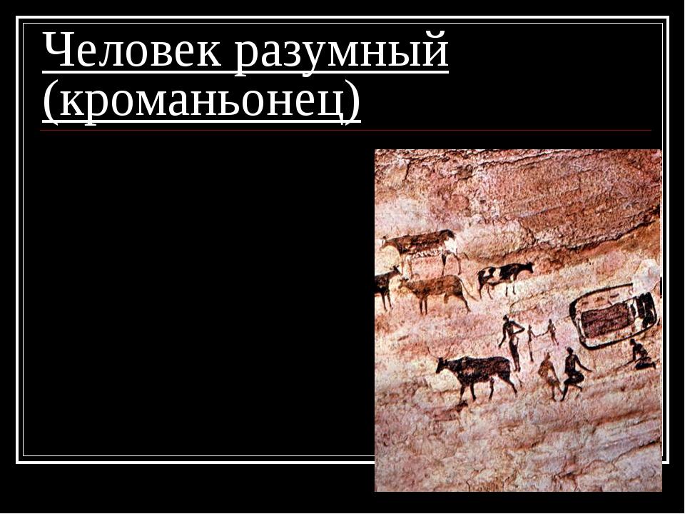 Человек разумный (кроманьонец) 5. из рисунков возникла письменность; 6. начал...
