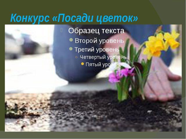Конкурс «Посади цветок»