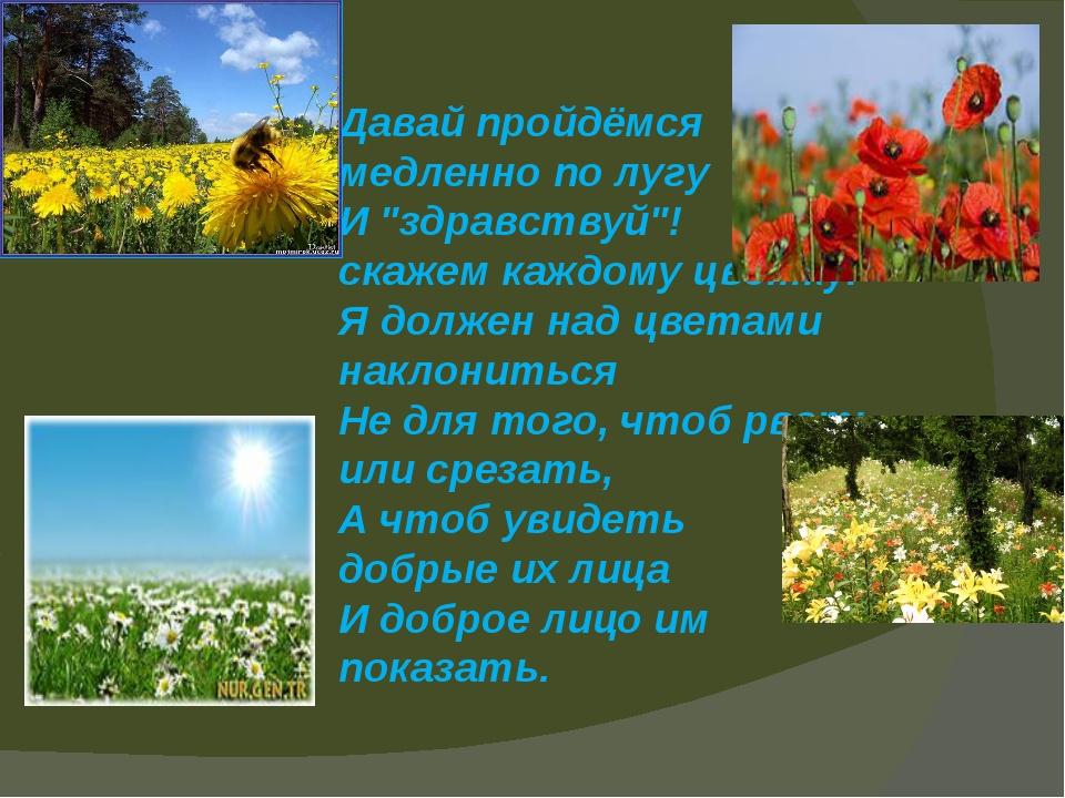 """Давай пройдёмся медленно по лугу И """"здравствуй""""! скажем каждому цветку. Я..."""
