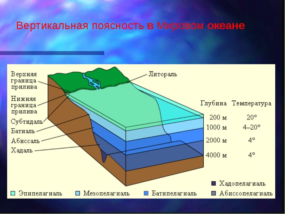 Вертикальная поясность в Мировом океане